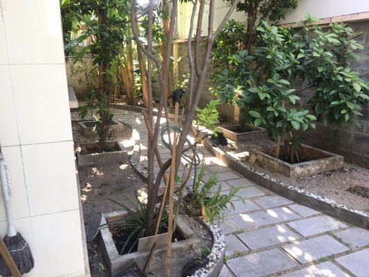 Cho thuê biệt thự sân vườn khu Kiều Đàm
